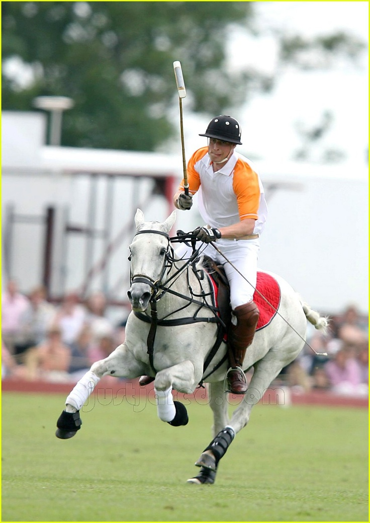 look at that power in Price Williams little grey polo pony