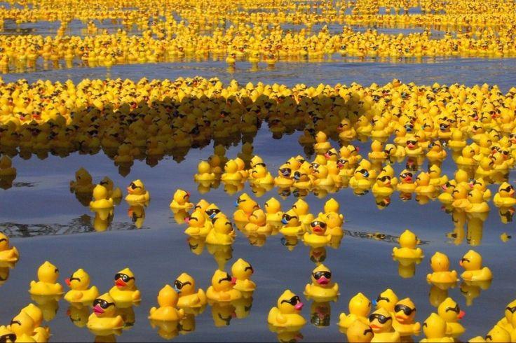 Gespot: Do the Duckface