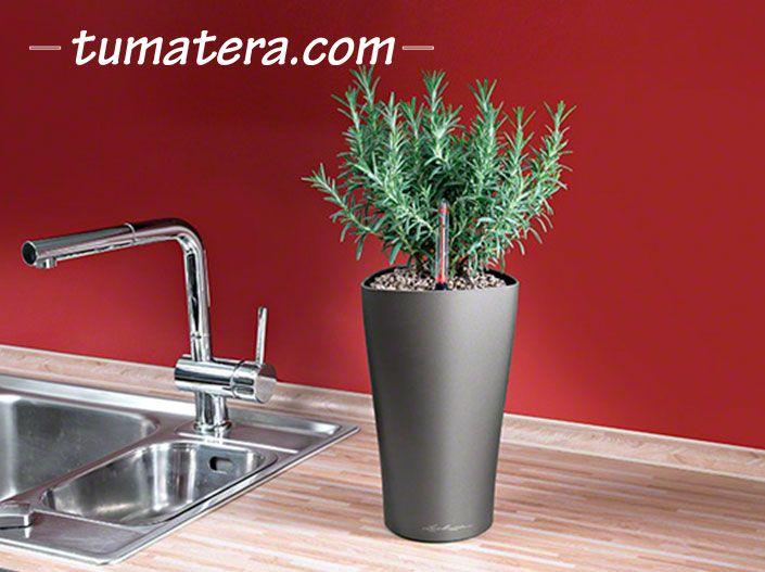 Encuentralas en: http://www.tumatera.co/products/matera-inteligente-03-mi-1526delta/