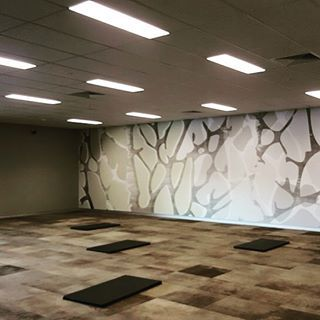 Shawcontractgroup Dyelab Shaw ContractCommercial CarpetSouth Africa LabsTilesCarpets