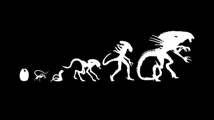 xenomorph | Wallpapers Prometheus Alien Films Movies Xenomorph Evolution Vectors ...