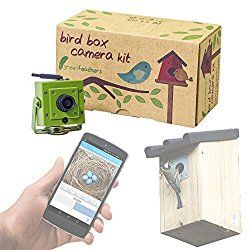 In this aricle, we review the Green Feathers Wireless Box Camera With Night Vision. If you're looking for a great camera for capturing birds and other....