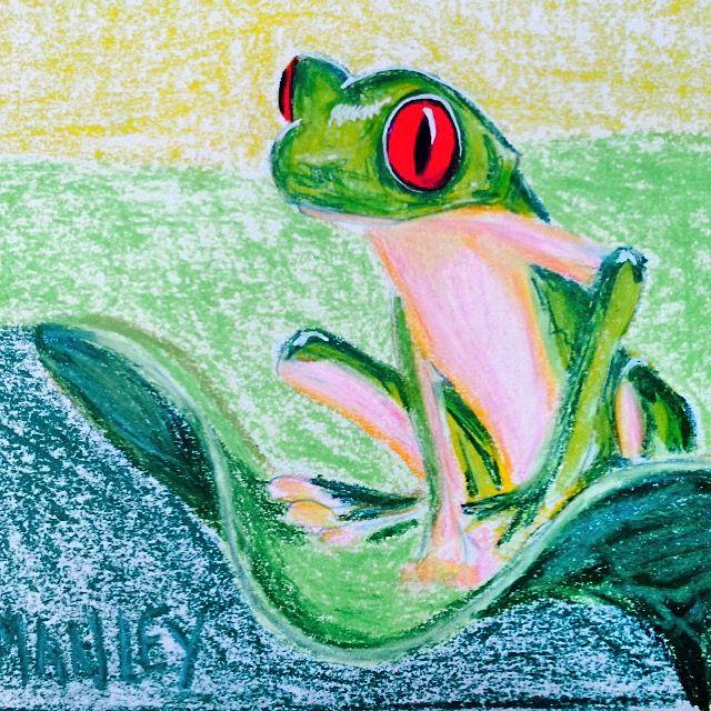 Green frog with green eye.  Grøn frø med røde øjne.  Farveblyanter.
