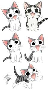 chi cat