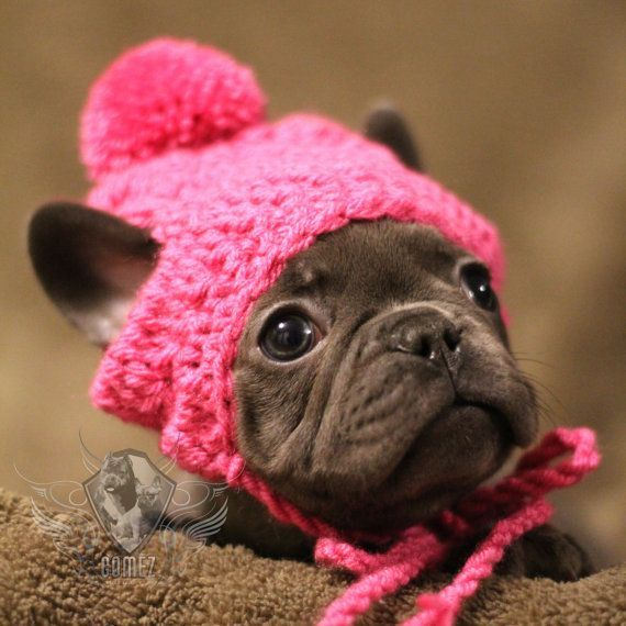 d6cf851d6bb Handmade French Bulldog Clothe Puppy Beanie crochet pom pom hat dog clothes  dress up