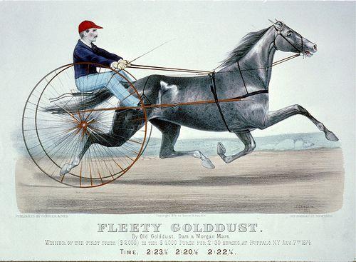 008-Imagen carreras caballos trotones-Library of Congress