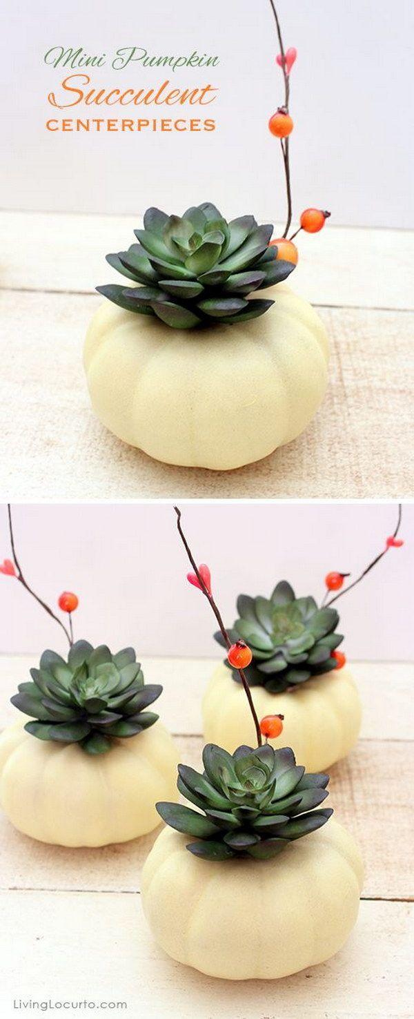 Mini Pumpkin Succulent Centerpiece Craft.