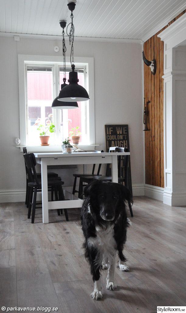 hund,collie,svartvitt,industri,industrilampa,timmervägg,plankgolv,matsalsbord,ikea,norden,svarta stolar,industritavla,trofé,hörn