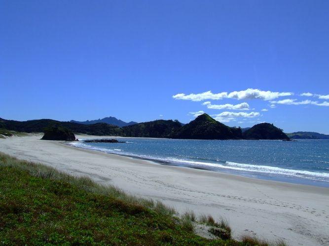 Medlands Beach Campsite, Great Barrier Island, Hauraki Gulf, New Zealand