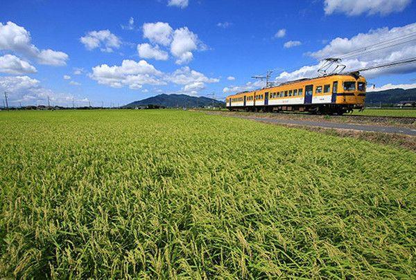 一畑電車で田園風景と宍道湖の景色を楽しむ。