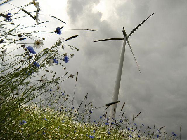 Why Buy RECs | Green Energy Commodities