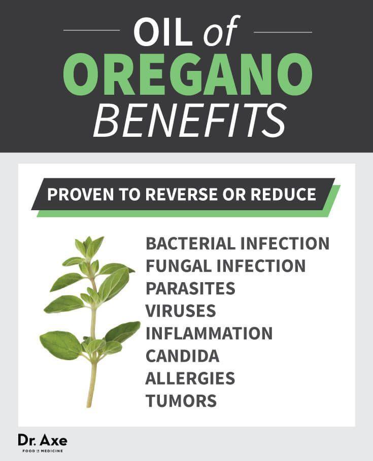 Oregano Oil Health Benefits List