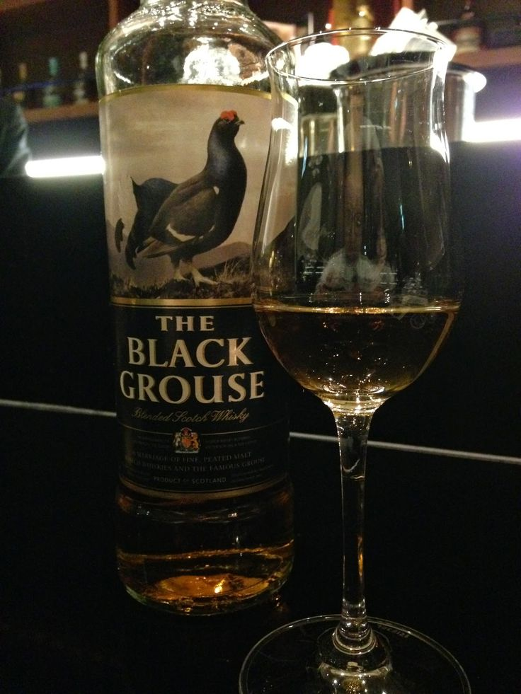 blackgrouse