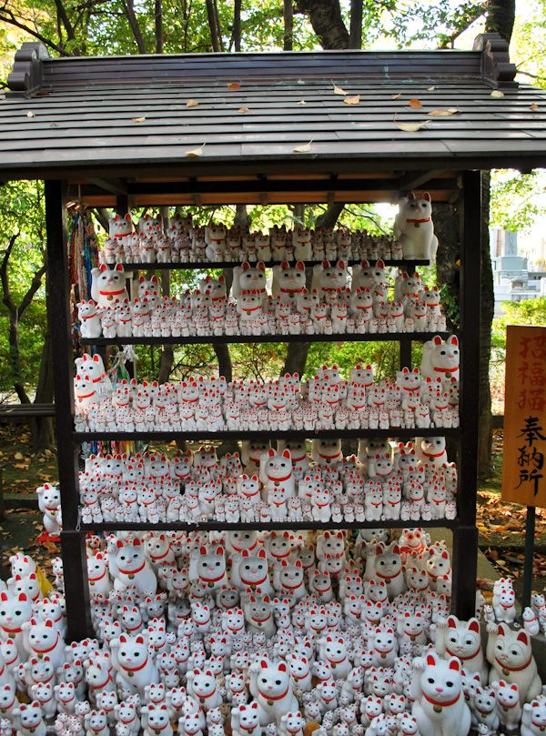 Maneki Neko - Gotokuji | iGotokuji is said to be the birthplace of Maneki Neko, the beckoning cat. The Buddhist temple is located in Setagaya, Tokyo and has a beautiful display of the lucky ceramic cats.#tokyo #japan