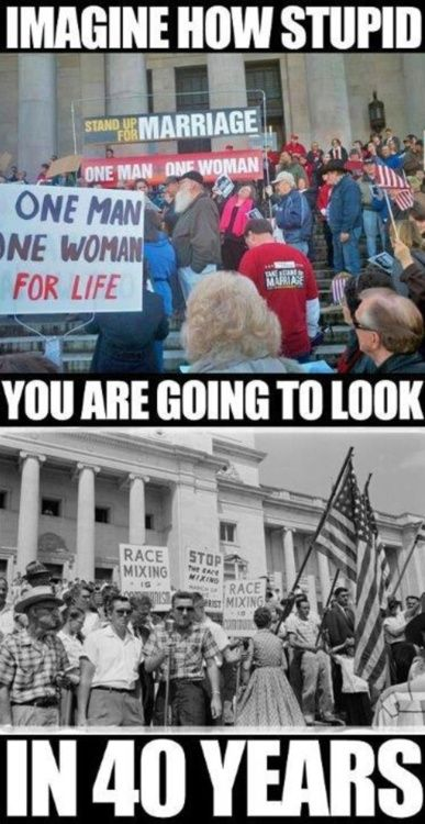 Or how stupid you look now.........: Gay Marriage, Human Rights, Equality Rights, Civil Rights, Food For Thoughts, 40 Years, So True, Truths, True Stories