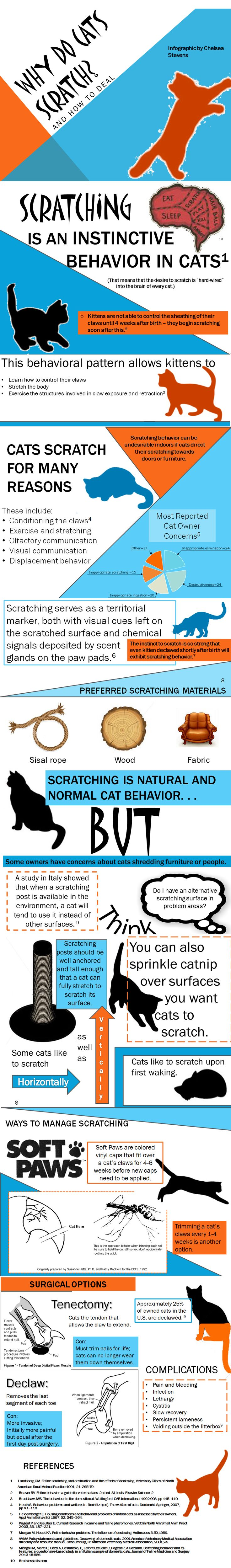 Cat scratching behavior infographic. However, we strongly disagree with the surgical options - it's painful, unnecessary, and hampers a cat's ability to defend itself. Please consider learning to trim their claws, or treat your kitty to a mani/pedi at your vet's office.
