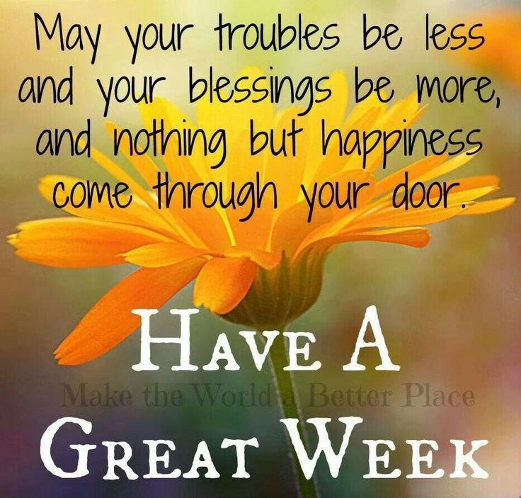 May your troubles be less and your blessings be more, and nothing but happiness come through your door. Have a Great Week #goodweek good week quote flower