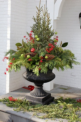 """boxwood wreath, insert a """"tree topper"""" and.........pine cones at the base. DONE!: Idea, Trees Toppers, Front Doors, Holidays Decor, Christmas Urn, Christmas Decor, Front Porches,  Flowerpot, Outdoor Planters"""