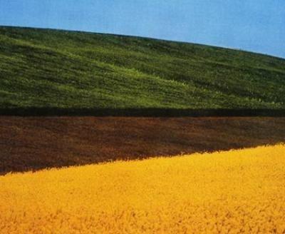 Basilicata, Italia, 1995, Franco Fontana