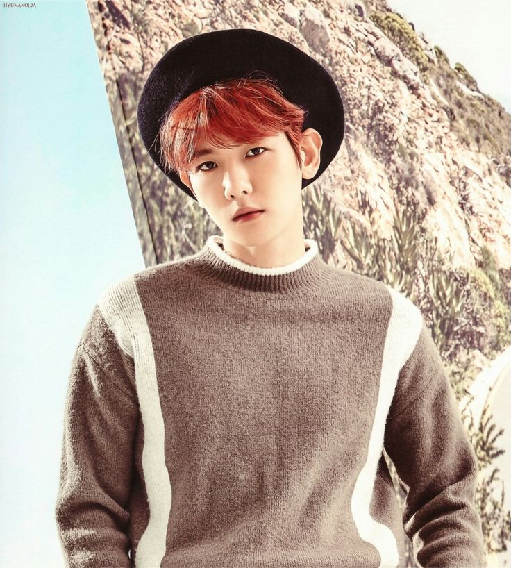 24 Best Images About Baekhyun On Pinterest