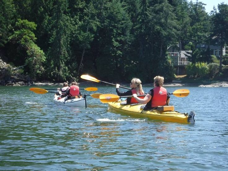 Let us take you into the wild!  Kayaking with Dog Mermaid Eco Excursions, Kayak Rentals & Retreats, Pender Island, BC