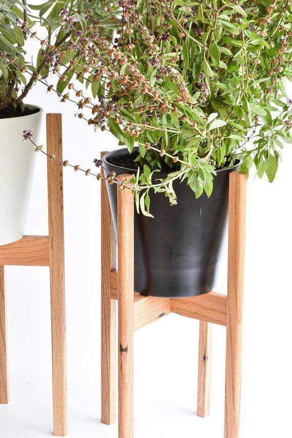 Best 25 Modern Plant Stand Ideas On Pinterest Plant