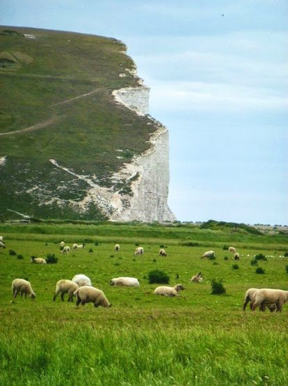 Birling Gap, East Sussex, England (grumpysistersink.blogspot.com) Baaaaaaa…..this is one of my favourite places in the world.