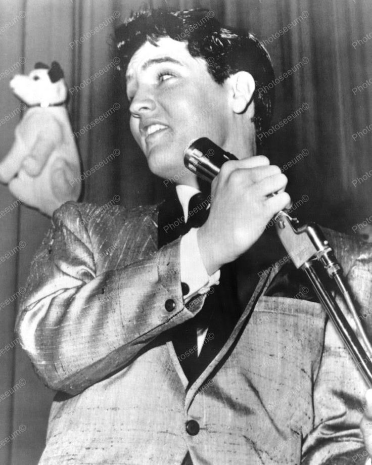 elvis presley puppy dog love 1950s 8x10 reprint of old photo