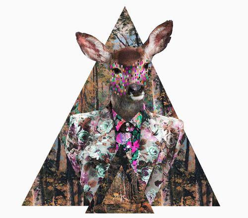 Cervos simbolizam o poder da gentileza e gratidão.      Valter Barros Moura       Veados, Cervos e Alces Americanos constituem um trio d...