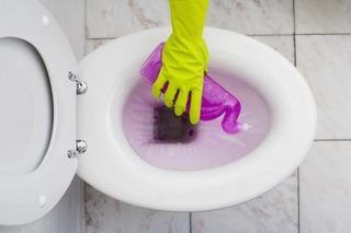 How to Remove Urine Smell From a Toilet | eHow