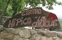 Centro Hipico cercedilla