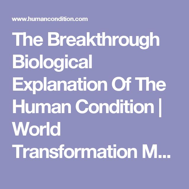The Breakthrough Biological Explanation Of The Human Condition   World Transformation Movement