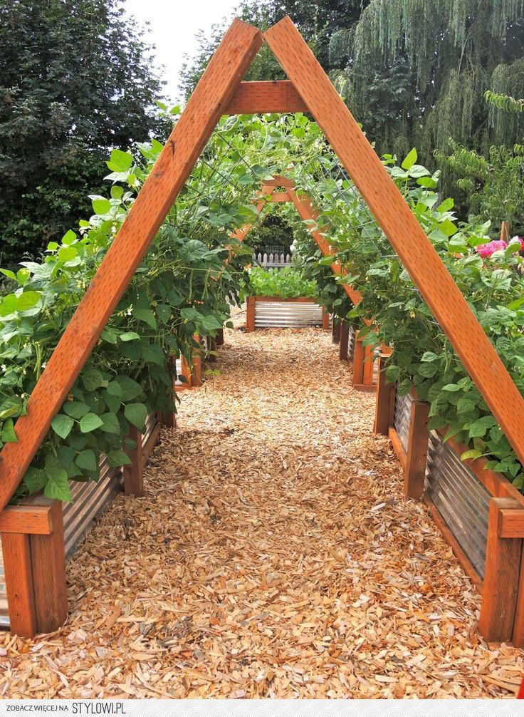 96 best Accessibility images on Pinterest | Gardening, Raised beds ...