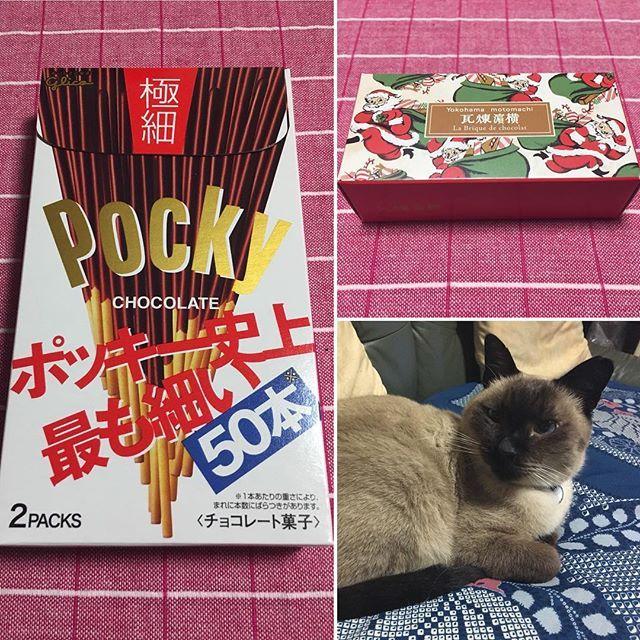 . 昨日11/11は、ポッキーの日 韓国ではペペロの日 (韓国のLOTTEのポッキーの名前) …って事で、私の好きな極細ポッキー食べました😆 2本を1度に食べるんです。 なら、普通の太さで良くない❓ と思うでしょうが、なんか2本まとめて食べた時の食感が好きなんです😆 なんでやろ🤔(笑) . 右上のお菓子は両親が関東に旅行に行った際のお土産🍀 パッケージが可愛い💕 食べるの楽しみです😊 . そして、金曜日は急遽用事があって 1人で主人の実家へ🚗💨 愛猫のパンダに癒されました😌💕 . #ポッキーの日 #ペペロの日 #뻬뻬로 #横浜のお菓子 #愛猫 #パンダ #犬派だけど猫も好き