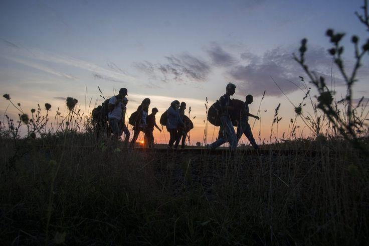 Salgamos de dudas: ¿ Inmigrante o refugiado ?