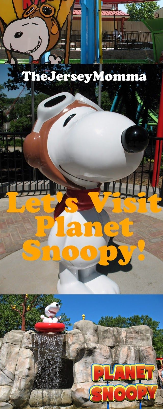 The Jersey Momma: A Review of PLANET SNOOPY in Dorney Park Allentown, PA