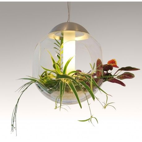 Suspension min serre vegetal babylon jardins d 39 int rieur for Plante lumineuse