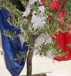 De la Pierre A l'Olivier, un groupe de parole pour les familles de militaires morts ou blessés en Opex https://www.facebook.com/photo.php?fbid=10204570276599186&set=gm.735267669879945&type=1&theater