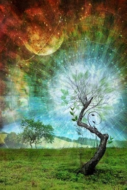 A consciência é um estado natural do Ser, não é fabricada. A experiência da consciência é a Presença Incondicional, o que significa que nós  não possuímos a consciência, nós apenas a vislumbramos.
