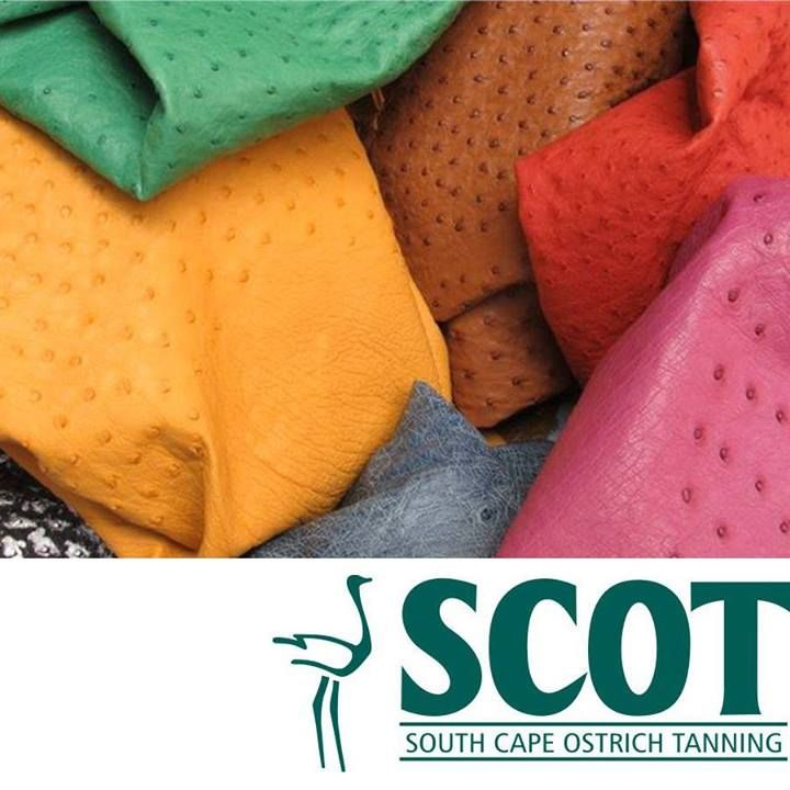 Currently SCOT produces a wide variety of colours and finishes and the skins come in five grading categories for use in a wide range of finished goods. SCOT produces some of the best clothing ostrich leather used by the world's leading fashion apparel manufacturers. #ostrich #ostrichleather