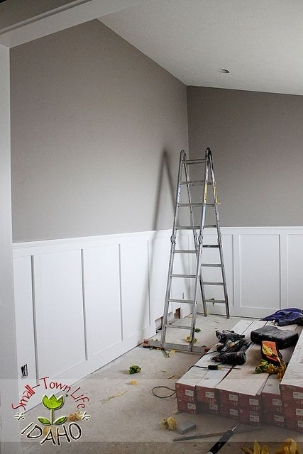 9.WAINSCOT This picture is an example of wainscot because the top half is painted and the bottom half has a white wood. This is different from cove molding because there is not a molding on the ceiling but a panel of wood along the bottom.