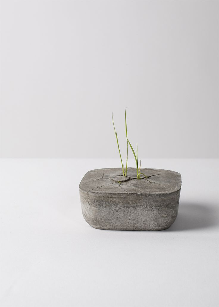 Potted  Material: Cement, Construction Recycled Waste, Terra, paddy  Size: 80×80×35 mm   Weight: 0.6 kg Copyright by bentudesign. All rights reserved.粤ICP备14020152号 站长统计