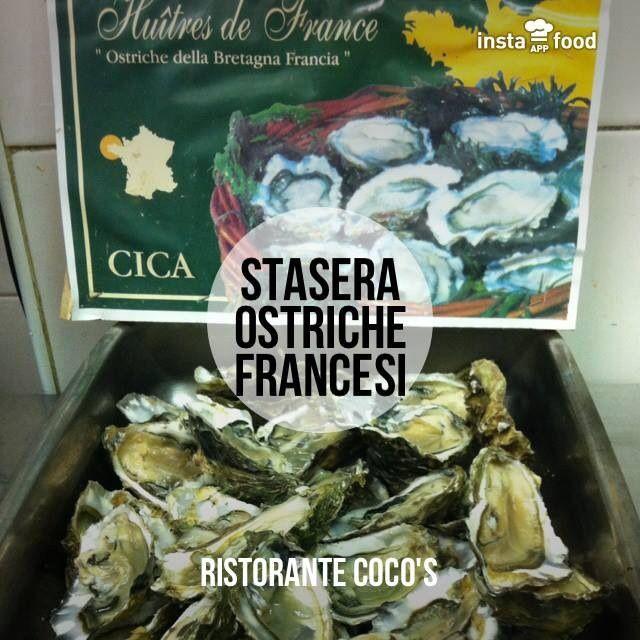 Ostriche. Coco's - Pizza e Cucina Mediterranea - Tarquinia Lido (Vt) 338/6064127