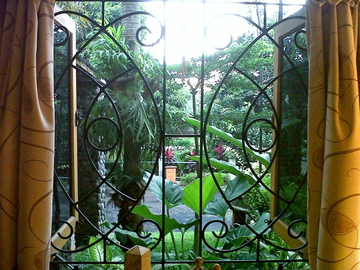Greenery as shades and natural curtains outside the window of my tropical house in Indonesia.