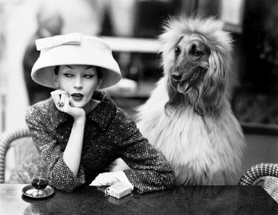 "Richard Avedon ""Dovima with Sacha"" (1955). Cloche and suit by Balenciaga."