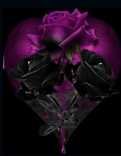 210 best images about black rose black heart on pinterest - Pics of roses and hearts ...