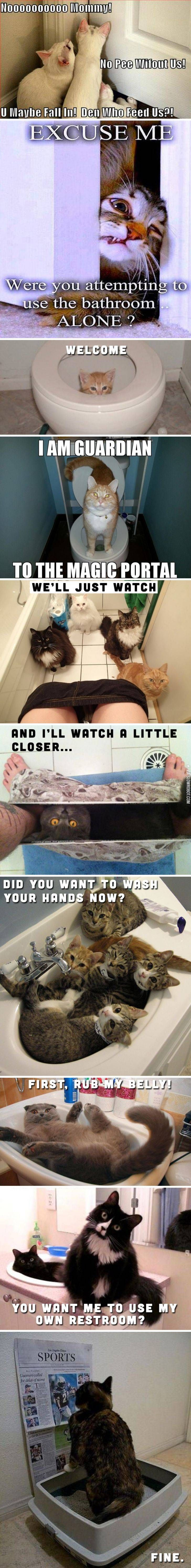 Cats+and+bathrooms. Anyone who has ever had a cat can relate to this. I know I can!