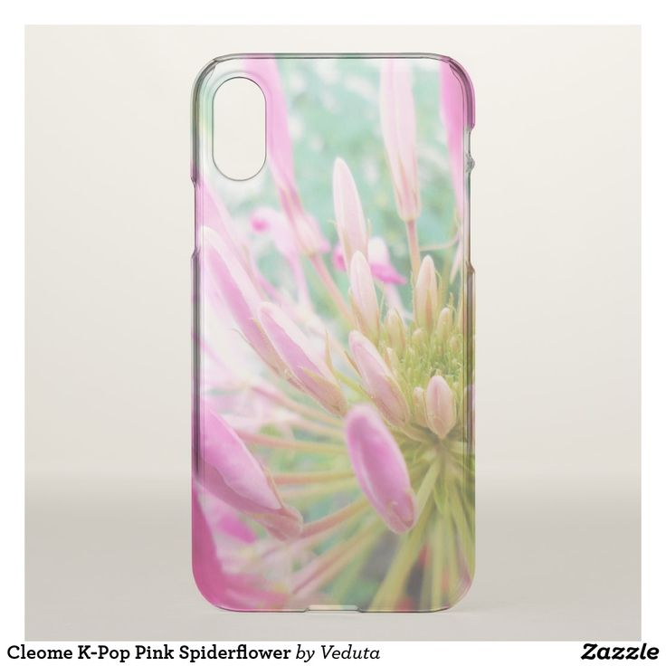 Cleome K-Pop Pink Spiderflower iPhone 8/7 Case