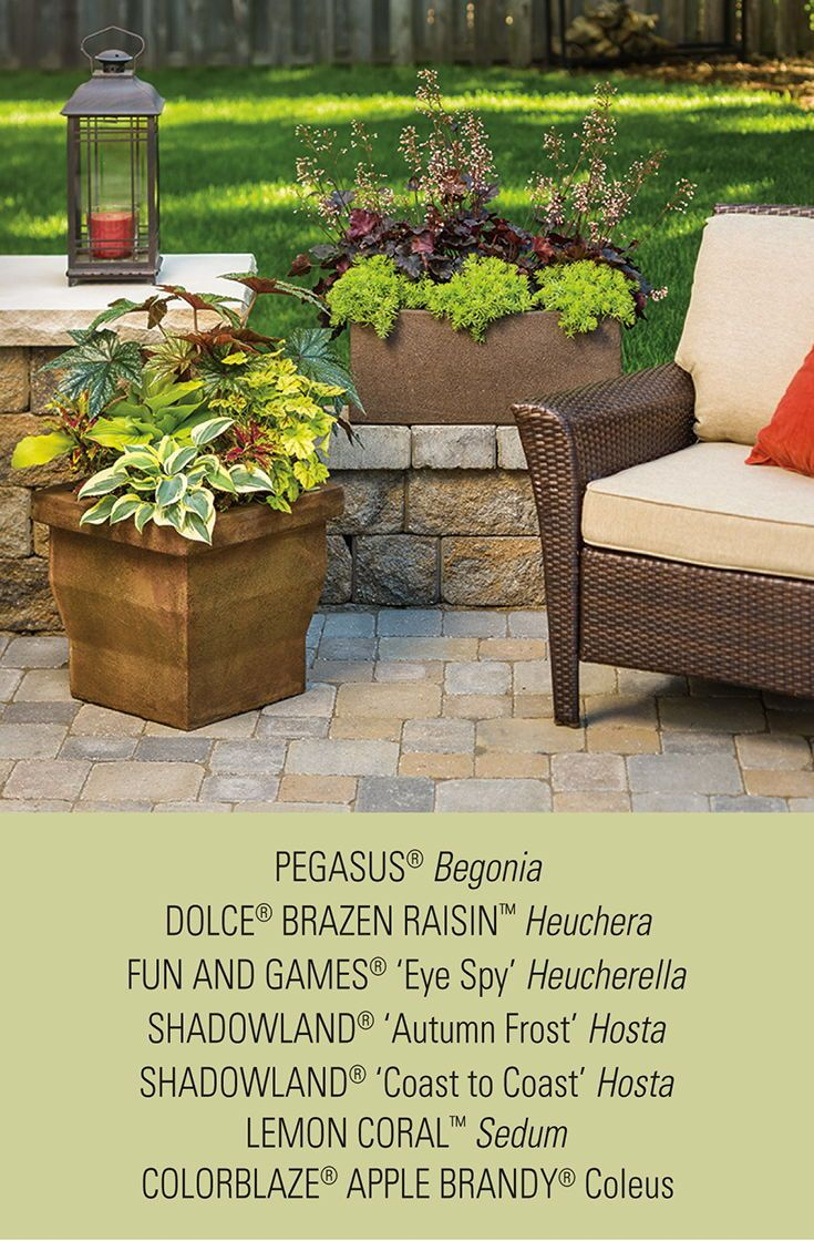 Mix A Wide Variety Of Shade Loving Perennials And Annuals In