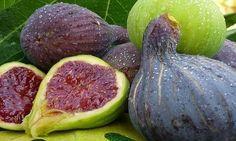 Como Ganarle a la Diabetes, Triglicéridos, Colesterol y Úlceras con la increíble fruta de higo y sus hojas